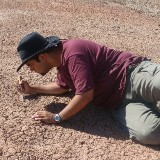 An image of Paleozoologist