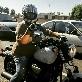 An image of bikertattsgirl
